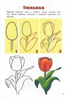 60391-353cd-46147672-m750x740-u2c3b3 (493x700, 169Kb) Flower Doodles, How To Draw Tulips, How To Draw Nature, Doodle Drawings, Easy Drawings, Doodle Art, Pencil Art, Pencil Drawings, Flower Drawings