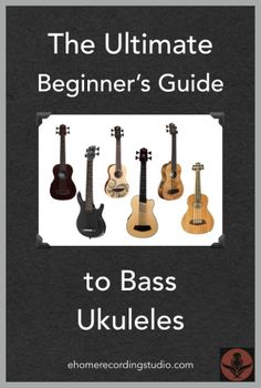 Shopping for a bass ukulele? In this post I explain all the key details about this unique instrument and show you the top models currently on the market. Learn Bass Guitar, Bass Ukulele, Bass Guitars, Guitar Tabs, Guitar For Beginners, Learning Process, Music Download, Helpful Hints, Sheet Music