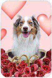 """Australian Shepherd Red Merle Tempered Cutting Board Hearts & Roses by Doggie of the Day. $29.99. Please allow 4 days to ship. 11.8"""" x 7.87"""" x 5/32"""". Dishwasher Safe. Durable. Spice up your kitchen with a fabulous cutting board! These cutting boards are perfect for home chef's and restaurant owner's alike. This is a specially coated glass cutting board that is durable and dishwasher-safe."""