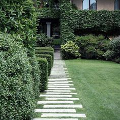 Tight hedges and loose hedges, we love gardens that achieve that longed for combo: informal formality. Stepping stones mix with a lawn whose edges are kept straight and free-spirited spreaders that soften the edges to give the whole a rustic charm. Not the very neat planting of square hedges; all is not shaggy. Ivy walls form the backdrop achieving that longed for combo: informal formality. Regram @nananikolaidou #ivy #climber #vines #path #creeper #hedge #clinger #vine #gardendesign #style…