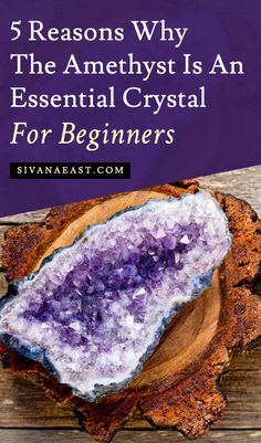 5 Reasons Why The Amethyst Is An Essential Crystal For Beginners