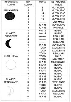 Fisherman& Weekly :: Schedule your fishing trip according to Semanario del Pescador :: Programa tu salida de pesca segùn la tabla lunar y… Fisherman& Weekly :: Schedule your fishing trip according to the lunar table and … -