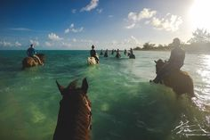 Horseback Riding in the Water |  | 15 Best Things to Do in Turks and Caicos | /estherjulee/