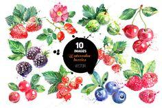 Watercolor Berries Vector Set by Elena Pimonova on Creative Market