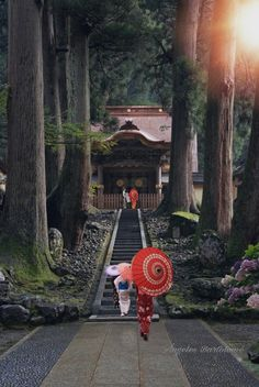 Eiheiji es de hace aproximadamente 760 años (1244 años) tiene 70 edificios compuestos por pasillos y templos. Dos millones de personas tienen entrenamiento duro de noche y día, el recinto tiene un tamaño de unos 100.000 metros cuadrados, es un Reiiki verdaderamente digno como un dogo cura, Esta en la Prefectura de Fukui, Japón