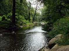 Ridley Creek - Wikipedia, the free encyclopedia ~ Ridley Creek flowing through Ridley Creek State Park located in Chester & Delaware Counties, Pennsylvania