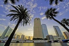 Tampa, FL....where me and my little family are moving to soon:)