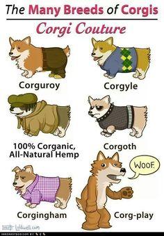 Corgi style