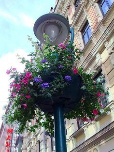 Helsinki - Summer (ヘルシンキの短い夏) by Minako Shoh, via Behance