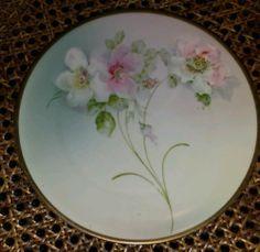 P M Bavaria handpainted china -flowered plate