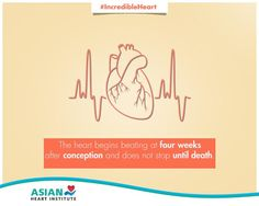 An interesting fact about the Human Heart!  #TheIncredibleHeart #AsianHeartInstitute #heart