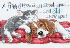 Dimensions Needlecrafts Counted Cross Stitch, A Friend Knows