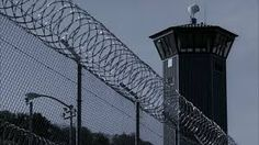 Image result for barbed wire fence