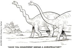 """Have YOU considered seeing a Chiropractor?   www.360chiropractic.com  """"Turn Your Health Around with 360 Chiropractic!"""""""