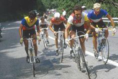 Hinault / Fignon