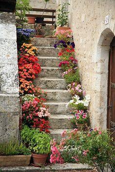 Degraus floridos. Lindo! Steps garden #Flores #jardim #quintal #jardin #vida ao ar livre #outdoor living #home garden #patio #garden #Backyard #flowers #fleurs #Vaso #vase #vessel #pot #vidro #glass #vasodevidro #glassvessel *⊱ Spring ⊰* *⊱ Primavera ⊰* *⊱ Printemps ⊱* #Decoração #decoration #ornamentos #composição #detalhes #details #decor #adornment #ornament l #Casa #lar #home #house # maison