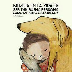 Todo perro necesita un hogar, amor, caricias y juegos , adoptemos perritos de la calle , ellos se lo merecen