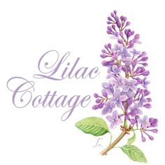 The Little Purple Cottage on Lilac Lane Lilac Color, Purple Lilac, Shades Of Purple, Periwinkle, Cottage Names, Cottage Signs, Lilac Flowers, Colorful Flowers, Lilac Blossom