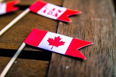 DIY Canada flags to celebrate Canada Day July - printable pdf and Cranberry Festival, Craft Projects, Projects To Try, Craft Ideas, Canada Day Crafts, Canada Day Party, Canada Holiday, I Am Canadian, Small Flags