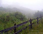 "Treasury of handmade creations that evoke the Smoky Mountains of Kentucky!   Landscape Photography - fine art fence nature Kentucky road - 11x14 Photograph ""Foggy Morning Kentucky Landscape 1"""