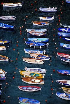 Barcos en el puerto, Vernazza, Cinque Terre, Liguria, Italia