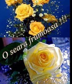 10271546_1525046927738193_4410628696023795130_n - o seara frumoasa tuturor Gifs, 8th Of March, Table Decorations, Fruit, Rose, Flowers, Google, Love Flowers, Gif Pictures