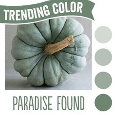 PPG Paints and PPG Pittsburgh Paints Brands named Paradise Found as its 2016 Color of the Year.