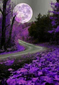 7 Tips for Beautiful Skin Beautiful Nature Wallpaper, Beautiful Moon, Beautiful Landscapes, Beautiful Places, Beautiful Pictures, Moon Pictures, Nature Pictures, Moon Photography, Purple Aesthetic
