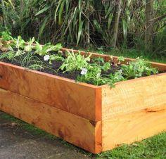 Edible Beds - Macrocarpa Raised Garden Kitset Dimensions & Pricelist