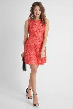 Kleid mit 3D-Stickerei - Orange Elegant, Daisy, Formal Dresses, 3d, Orange, Fashion, Long Dress Formal, Embroidery, Classy