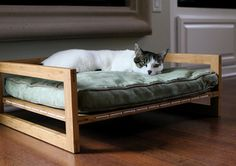 Bambu Hammock and Bambu Lounger Show Your Pets How Much You Love Them Dog Furniture, Furniture Design, Cama Design, Luxury Pet Beds, Wood Dog, Cat Room, Pet Home, Cool Pets, Dog Houses