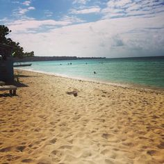 Mood  #nature #healthyliving #holisticliving #retreat #beachbum #beachlife #wellness #BrownstoneFlow #BrownstoneWellness