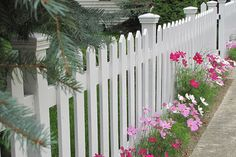 Picket fence | I had to get a photo of this beautiful white … | Flickr