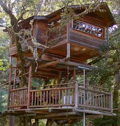 The new hotel: Out'n'About Treehouse Treesort, Oregon