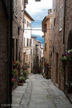 Narrow flower bedecked lane, Spello, Italy