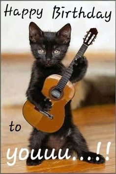 Details about funny cat playing guitar animal photo fridge magnet 2 & quo . - Details about funny cat playing guitar animal photo fridge magnet 2 collectibles Details about - Funny Animal Jokes, Funny Cat Memes, Cute Funny Animals, Cute Baby Animals, Funny Cute, Funny Dogs, Cute Cats, Funny Kittens, Super Funny
