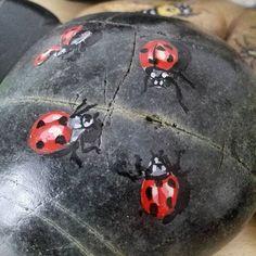 Ugurbocegi #artist #art #drawing #illustration #tasboyama #rockpainting #ladybug #insect