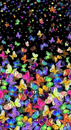 New nature wallpaper iphone shops ideas Butterfly Wallpaper, Butterfly Art, Colorful Wallpaper, Galaxy Wallpaper, Cellphone Wallpaper, Nature Wallpaper, Mobile Wallpaper, Wallpaper Backgrounds, Iphone Wallpapers