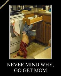 Never Mind Why, Go Get Mom,  Click the link to view today's funniest pictures!