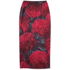 Printed Chine Pencil Skirt (€880) ❤ liked on Polyvore featuring skirts, bottoms, straight pencil skirt, red pencil skirt, pencil skirts, red skirts and straight skirt