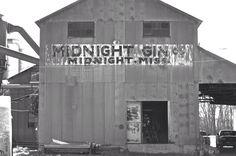 Midnight Gin in the Mississippi Delta
