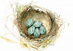 Watercolor Painting Art Bird Nest with 5 Blue Eggs Robin Nursery Home ...