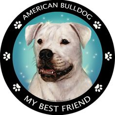 Friends of the homo sapien variety just won't do for you. Show the world who comes first in your life with this vinyl car magnet. A portrait of a American Bulldog is highlighted by a turquoise backgro