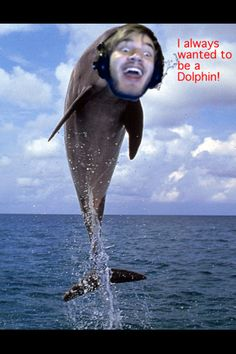 I've ALWAYS wanted to be a DOLPHIN!!