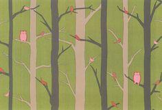 Owl in Birch Trees