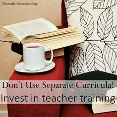 Don't complicate your life by using separate curricula for each child. Invest in teacher training!