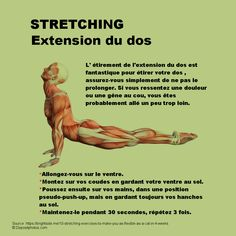 Yoga Pilates, Circulation Sanguine, Stretching, Yoga Fitness, Healthy Life, Exercises, Zen, Bodybuilding, Routine