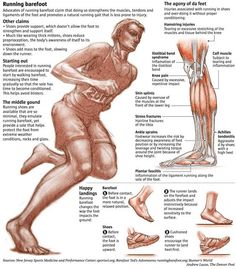 """I look at this diagram and think, """"That's me! I used to have flat feet but now I have arches! I can run now! And I can be bare foot! My feet are normal!"""" Barefoot Running"""
