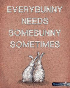 Every bunny ~ Funny pictures