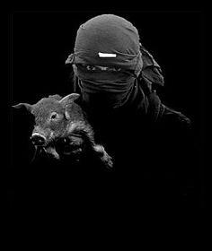 42 Mejores Imágenes De Alf Vegan Liberacion Animal